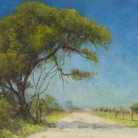 Road near Blanket Creek, Texas