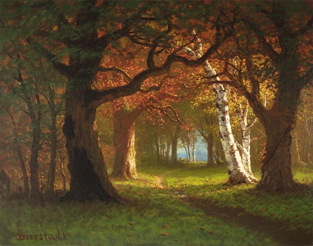 Bierstadt-Forest Near Saratoga