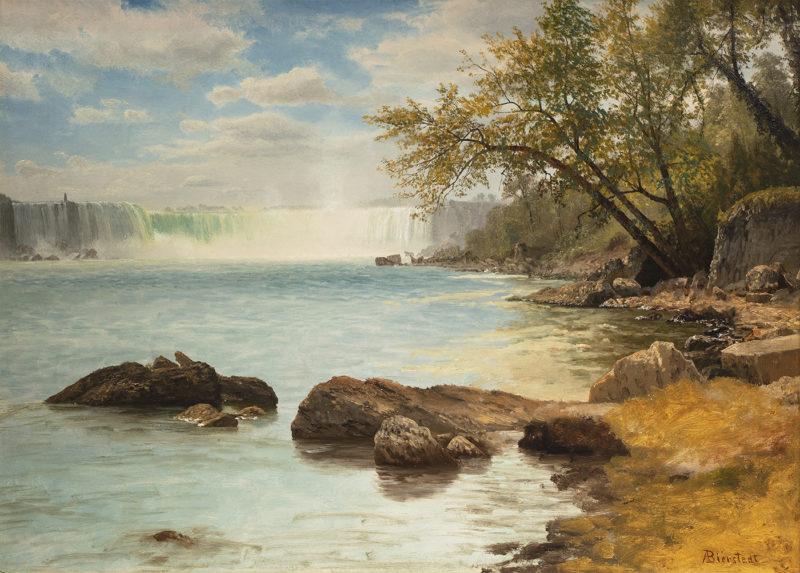 Niagara Falls with Terrapin Tower